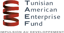 TAEF FELLOWS PROGRAM